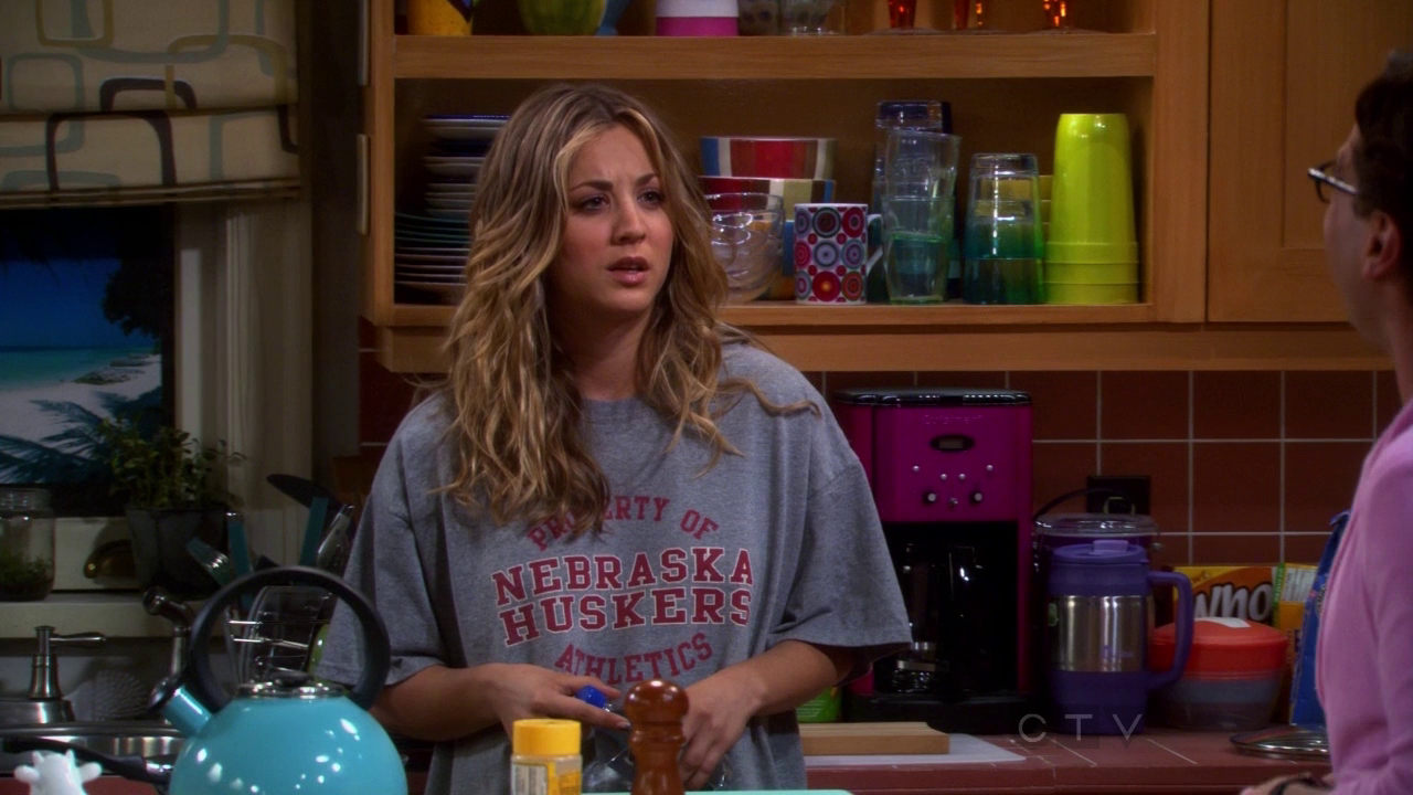 The Big Bang Theory - 5x23